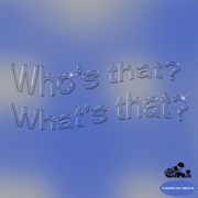 Who's That What's That - Niko B