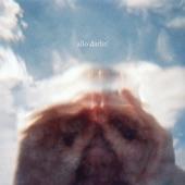Allo Darlin' - The Polaroid Song