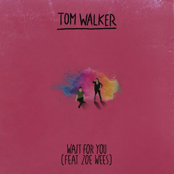 Wait for You - Single