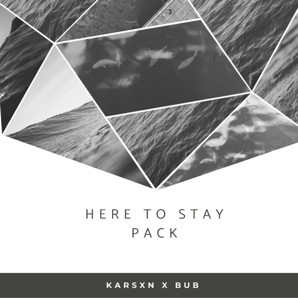 Here to Stay Pack - Single