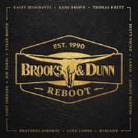 Album Brand New Man (with Luke Combs) - Brooks & Dunn