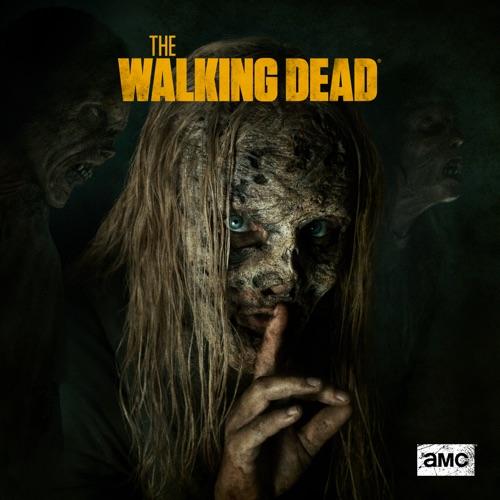 The Walking Dead, Season 9 image