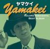 ヤマケイ yamakei ジャケット写真