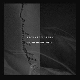 No Me Siento Triste Single By Richard Murphy On Apple Music