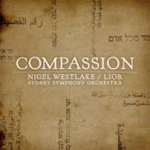 """Lior - Compassion: I. """"Sim Shalom"""" (Grant Peace)"""