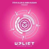 Trinket - STEVE ALLEN-AMIR HUSSAIN
