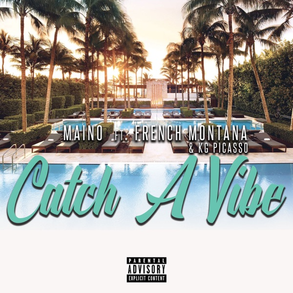 Catch a Vibe (feat. French Montana & KG Picasso) - Single