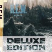 R.E.M. - Talk About The Passion