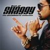 Shaggy - It Wasn't Me (feat. Ricardo Ducent)  artwork