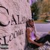 Moonwalking in Calabasas - Single