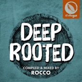 Rocco Rodamaal - Someday (feat. Brian Tappert)