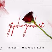 Ziphozenkosi
