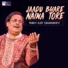 Jaadu Bhare Naina Tore Single