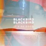 Blackbird Blackbird - It's So Good