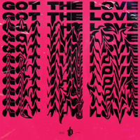 Got the Love - Single
