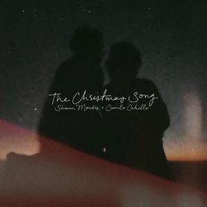 Shawn Mendes & Camila Cabello - The Christmas Song