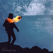 Carry the Fire - Single