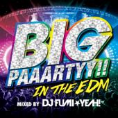 BIG PAAARTYY!! IN THE EDM mixed by DJ FUMI★YEAH!