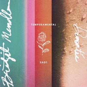 Temperamental Love - Single Mp3 Download