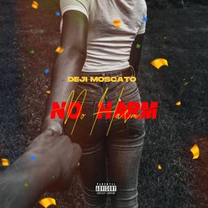 Déji Moscatô - No Harm
