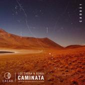 Caminata (Benjamin Fröhlich Remix)