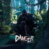 Danger - 23:05 artwork