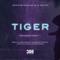 Tiger (Sean & Dee Extended Remix) artwork