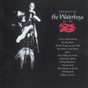 The Waterboys - The Whole of the Moon artwork
