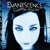 Download Bring Me to Life - Evanescence Mp3 and Videos
