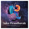 Aaka Pirandhavale feat Vignesh Ishwar - Sean Roldan mp3