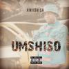 Kwiish SA - LiYoshona (feat. Njelic, MalumNator & De Mthuda) [Main Mix] artwork