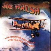 Joe Walsh - Happy Ways