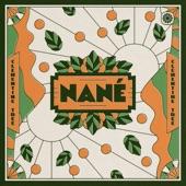Nane - Clementine Tree