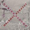 Stephen Malkmus & The Jicks - Groove Denied  artwork