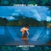 Karsh Kale - Letting Go