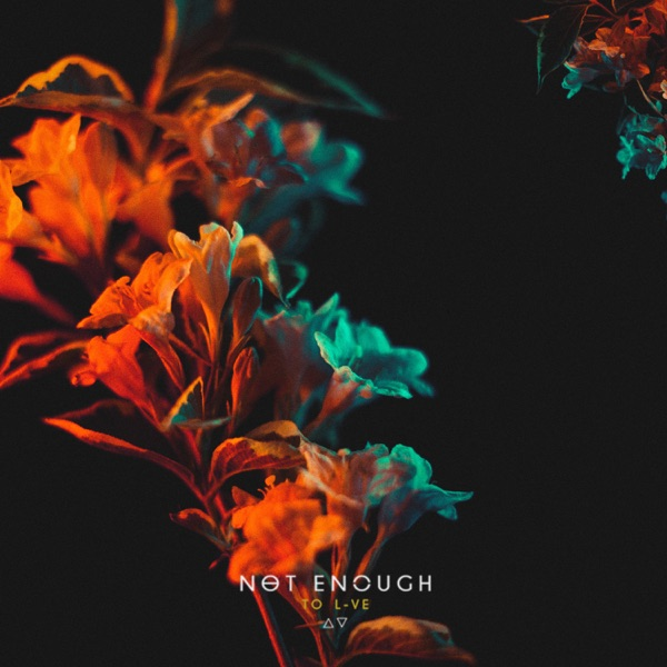 NOT ENOUGH - TO L-VE [EP] (2019)