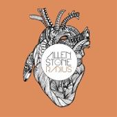 Allen Stone - The Weekend