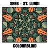 Seeb & St. Lundi - Colourblind artwork