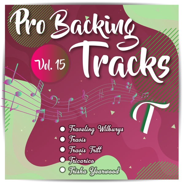 Pro Backing Tracks T, Vol. 15