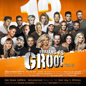 Various Artists - Afrikaans Is Groot Vol. 13
