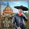 Pablo Montero - Que Me Digan Viejo ilustración