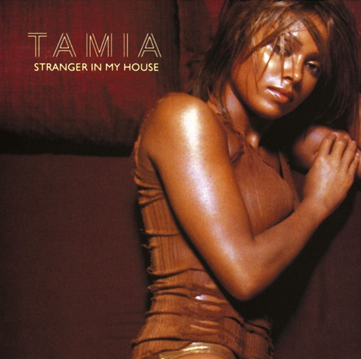 Art for Stranger In My House by Tamia