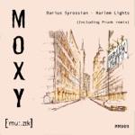 Darius Syrossian - Harlem Lights (Prunk Remix)