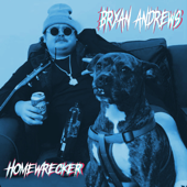 Homewrecker - Bryan Andrews