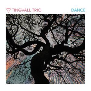 Tingvall Trio - Dance