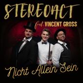 Nicht allein sein (feat. Vincent Gross)