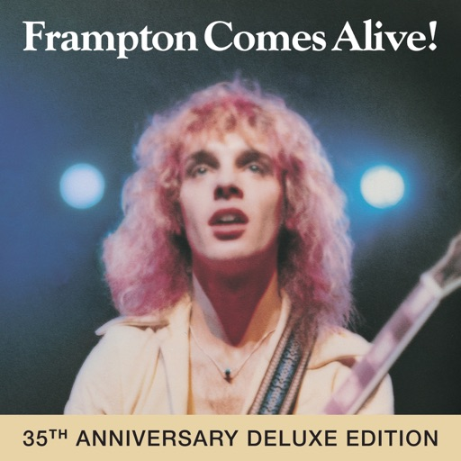 Art for It's A Plain Shame (live) by Peter Frampton