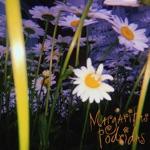 Margaritas Podridas - Púrpura