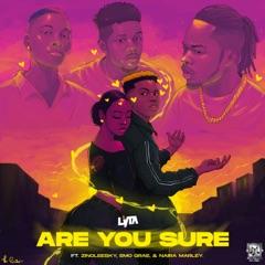 Are You Sure (feat. EMO Grae, Naira Marley & Zinoleesky)