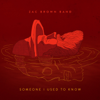 Zac Brown Band - Someone I Used to Know  artwork